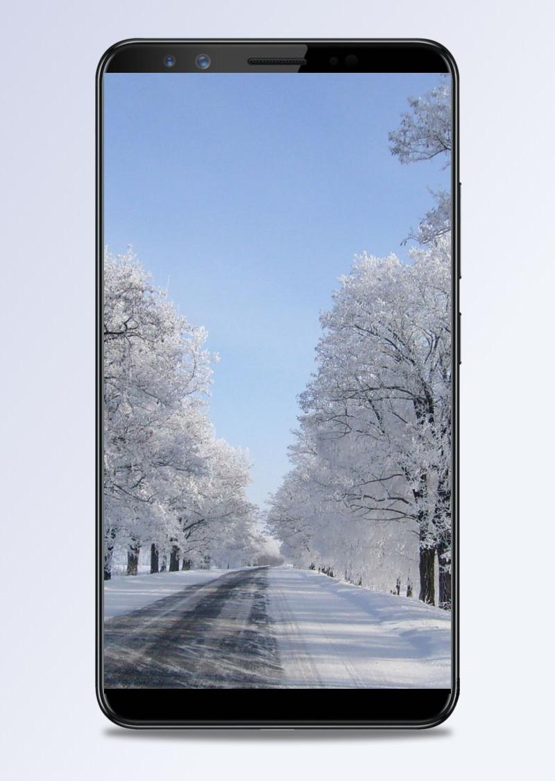 冬天櫻花雪景H5背景