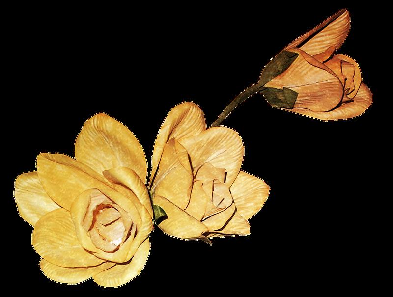 免扣素材 漂浮元素 枯萎的花瓣  名称 :                       格式
