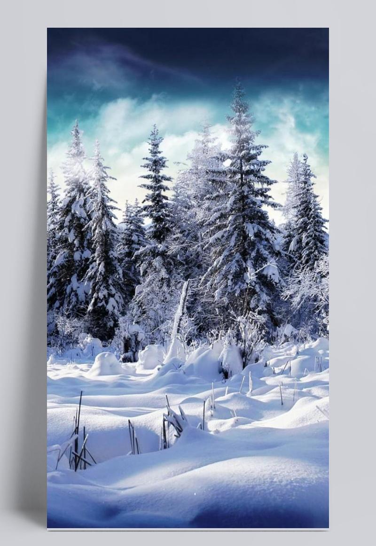 冬天美丽风景