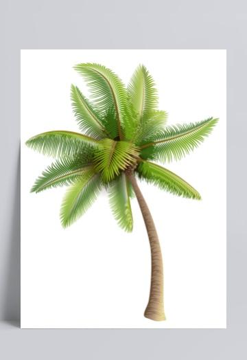 椰子树设计素材模板西安室内设计获奖图片