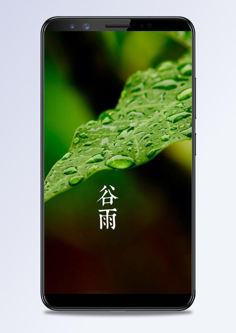 谷雨H5素材背景