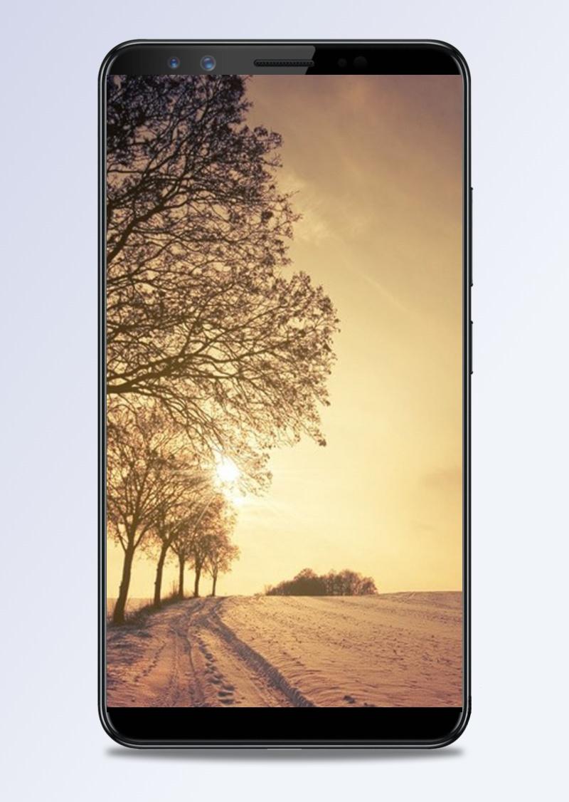 风景天空黄日树H5背景素材