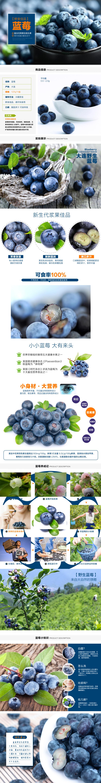 水果蓝莓详情页